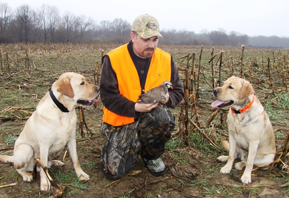 Daniel Johnson and his labs admire a chuckar at Birds Unlimited Hunting Club of Long Island, Manorville, NY. Pheasant and chuckar offer post-season thrills if you are willing to ante-up and hunt on a shooting preserve.