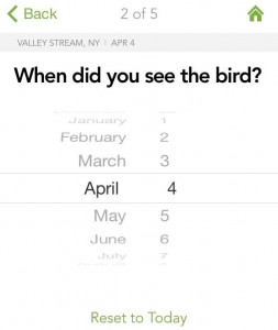 Figure 3. Next clue is the date you saw the bird. Cornell compares your sighting to records in the same time frame.