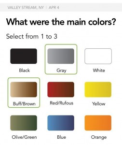 Figure 5. Pick the colors; you can chose up to three.